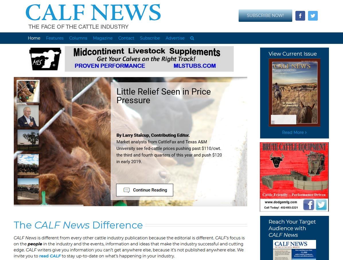 Calf News
